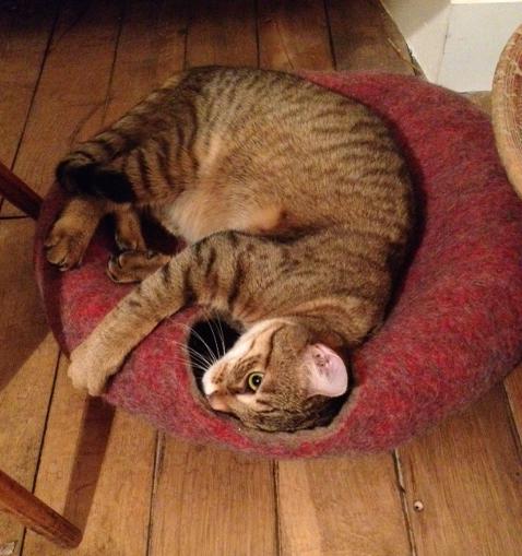 cat cave nid pour chat en feutre