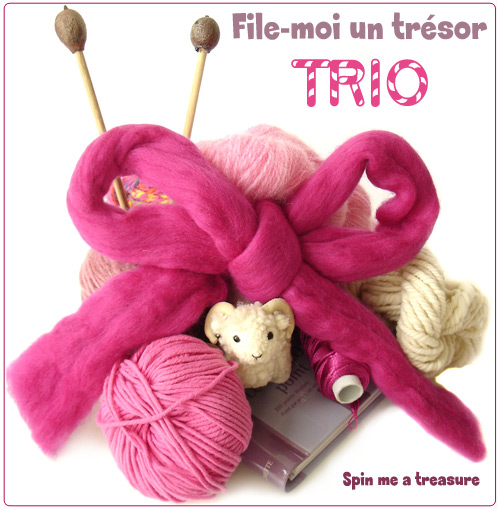 échange TRIO Tricotin